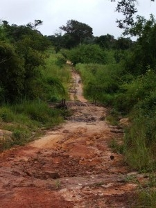 Photo: G. Assenheimer | A typical road in Katanga.