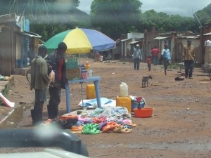 Photo: G. Assenheimer |  The main market in Lekenzolwa.