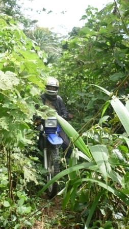 jungle track on motorbike