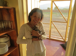 Me with Shire House kitten