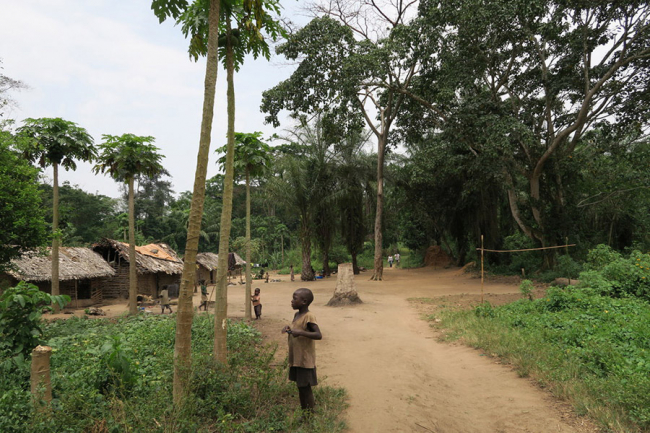 A boy stands by the side of the road in Zugulunka, a tree lined village in Boga
