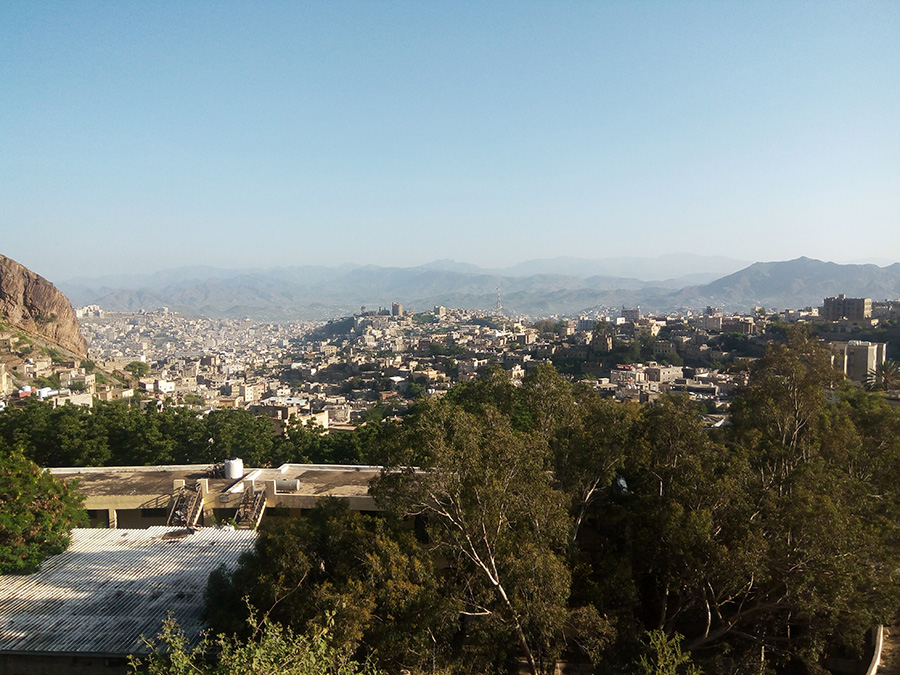 Image shows Taiz City skyline, with trees in the foreground and mountains in the background