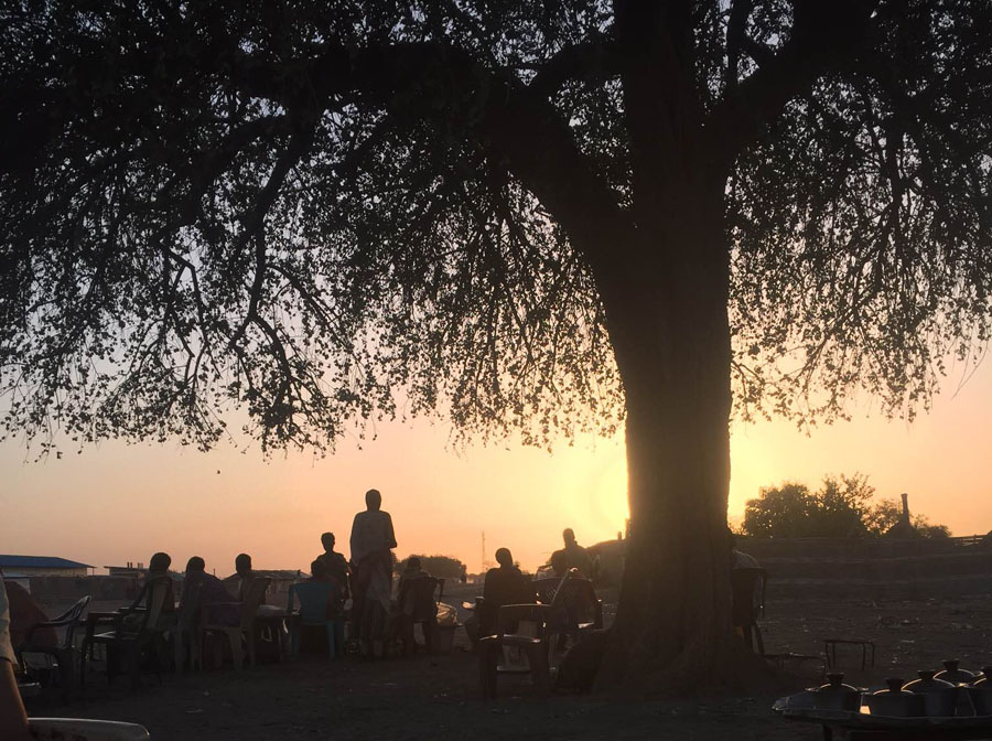 Photo of the tea shop as the sun sets, under a tree that is caught in shadow