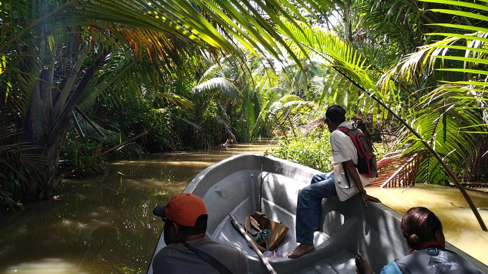 An MSF canoe heads upriver in Papua New Guinea