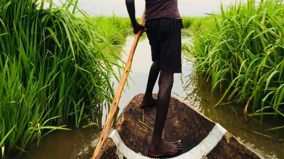Crossing a swamp in South Sudan