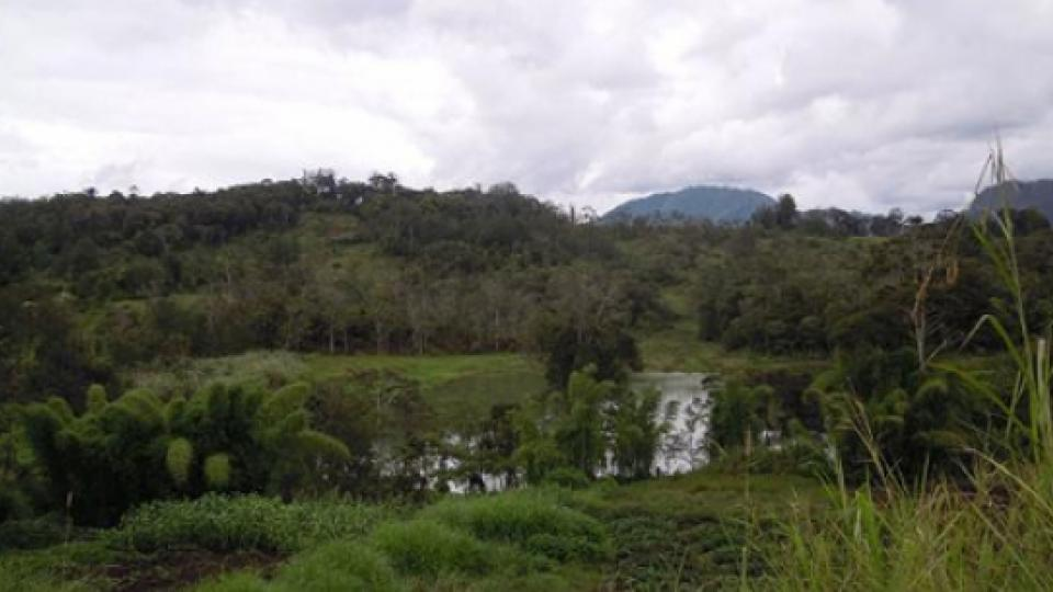 Nearby lake in Papua New Guinea