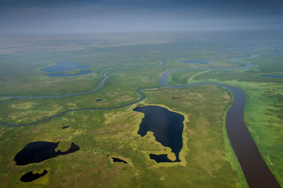 The Sudd - a vast swamp in South Sudan