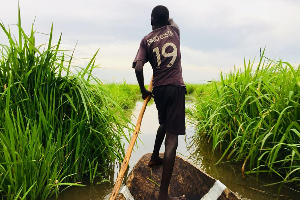 Navigating the swamps of South Sudan